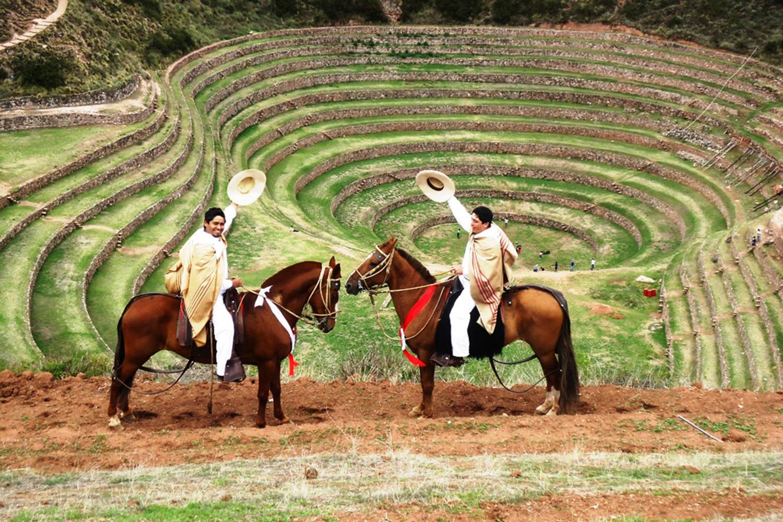 APUPACHA Horses (7)