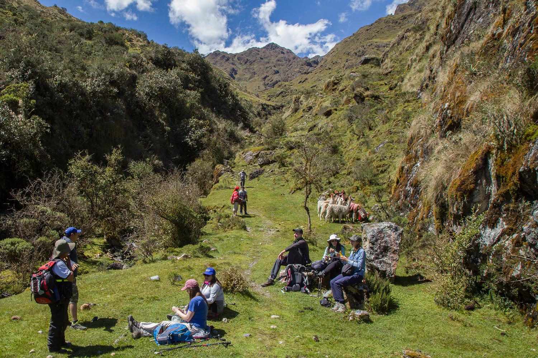 active-adventure-llamas-trek