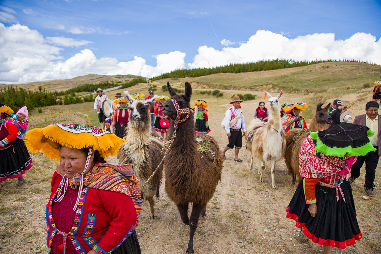 active-adventures-llama-trek